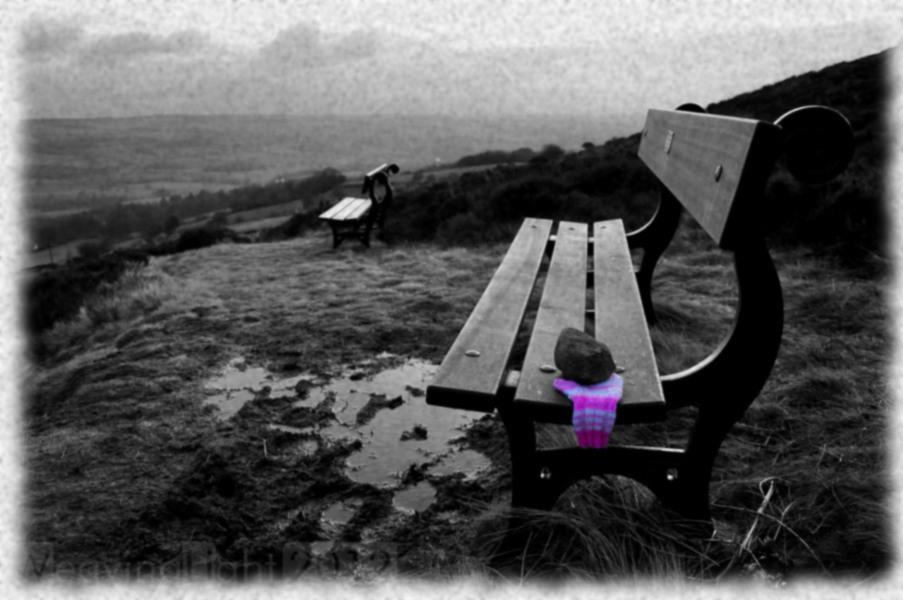 mitten on a bench