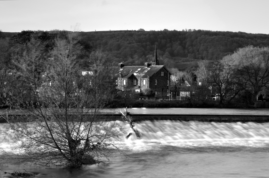 Wharfe Meadows in black and white