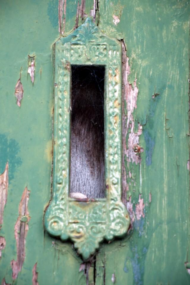 Green door ornament
