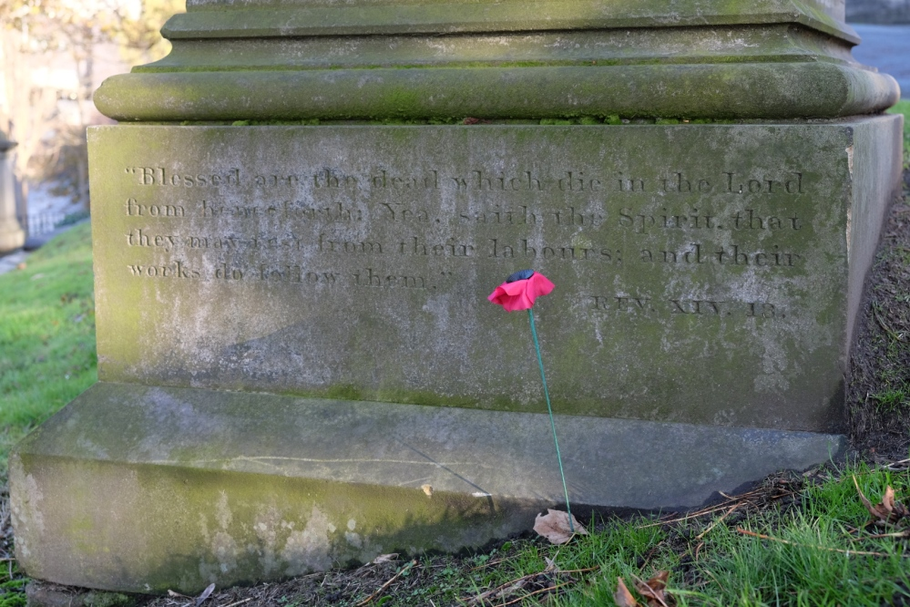 poppy in the graveyard