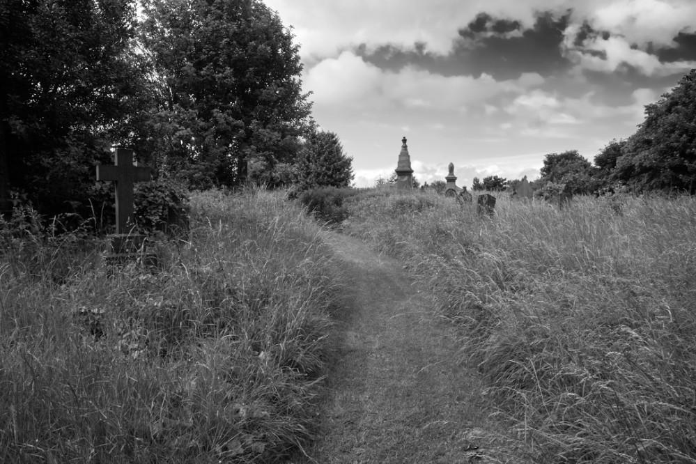 gravestones at Undecliffe Cemetery hidden by long grass